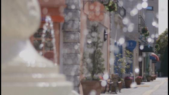 おもてなしと祝福の街 人生で最良の一日をアニヴェルセル東京ベイで アニヴェルセル 東京ベイ