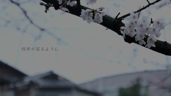 琵琶湖疏水と白川が交わる岡崎で、大切な人との「つながり」を実感できるウエディング ROKUSISUI KYOTO OKAZAKI(ロクシスイ キョウト オカザキ)