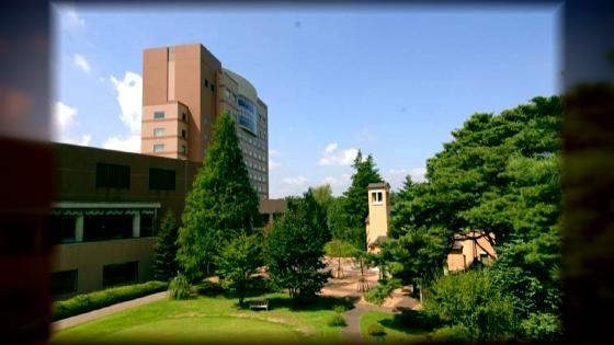 緑が包む独立型チャペルや、四季折々の自然に囲まれて叶う東京リゾートウエディング フォレスト・イン昭和館