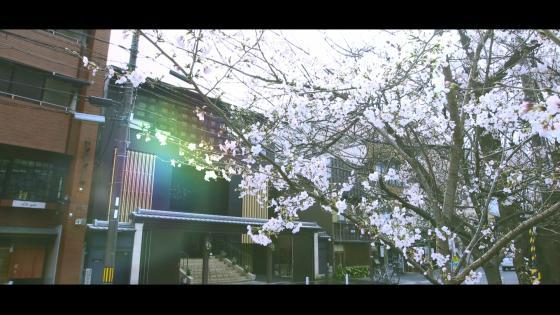 鴨川沿いで東山のロケーションを望む貸切邸宅で一日一組貸切の贅沢なウエディングを ザ オーク ガーデン(THE OAK GARDEN)