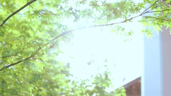 四季の彩りを優雅に愉しむ庭園と貸切邸宅 クリスタル輝くチャペルで美しい誓いを KORIYAMA MONOLITH(郡山モノリス)
