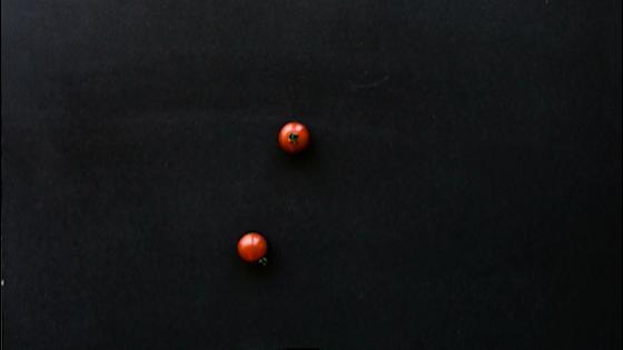 """再生回数ダントツ☆結婚式場の1分間クッキングが話題★""""シェフズペインティング"""" 四季の丘 seasons with"""
