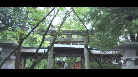 秘境にたたずむ境内で自然と歴史が紡ぐ「美しい一日」 大井神社 宮美殿