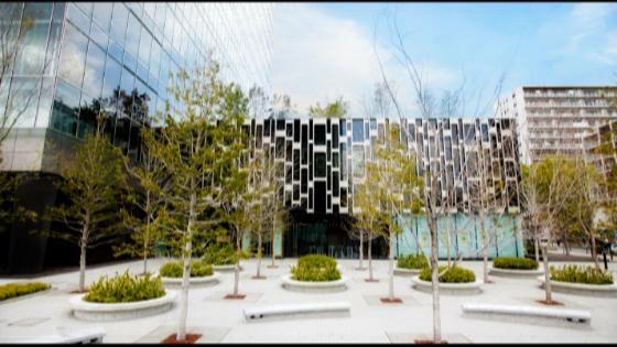バージンロード20m、白亜の壮麗なチャペルで叶う、家族との「絆」ウエディング アヴァンセリアン東京(AVANCER LIEN TOKYO)