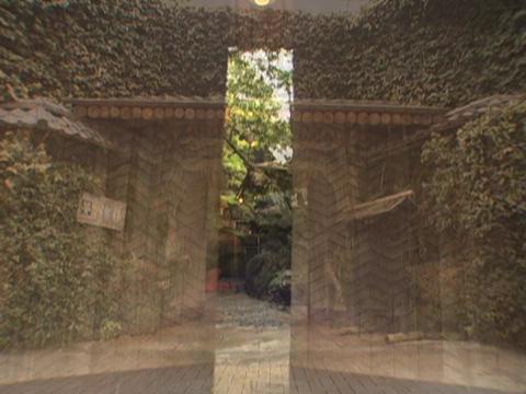 隅田川に望む創業80年を超える老舗料亭。日本のおもてなしでくつろぎのひとときを つきじ治作