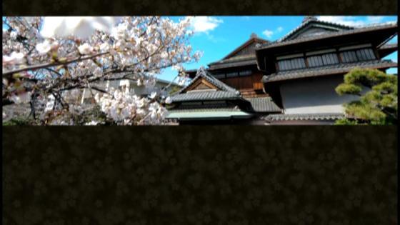 文化財ですごす希有な一日。日本の伝統美とモダンが薫る老舗料亭ならではのおもてなし 松楓閣