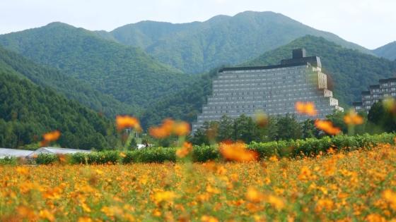 大きく広がる空と、花々に包まれる開放感満点のリゾートウエディング ホテルリステル猪苗代