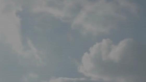 陽光降り注ぐ自然の中でのウエディング 広島エアポートホテル フォレストヒルズガーデン