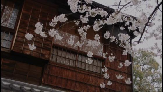 神戸北野でも希少価値の高い和の異人館。季節ごとに表情を変える日本庭園が魅力的 神戸北野 ハンター迎賓館