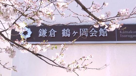 美しい日本の結婚式を新しく。鶴岡八幡宮がつなぐ古都鎌倉ラグジュアリーウエディング KOTOWA 鎌倉 鶴ヶ岡会館