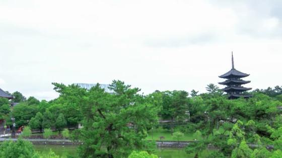 四季折々の奈良の風景が彩るパーティ会場 KOTOWA 奈良公園 Premium View