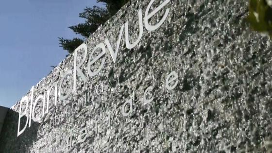 広大なガーデンを貸切。緑と空と自由を楽しむウエディングで特別な1日を ブランレヴュー宇都宮アクアテラス
