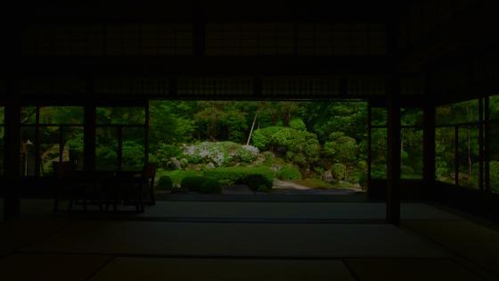 大正邸宅を貸切に自然の美に心なごむ「桜鶴苑」 桜鶴苑(おうかくえん)
