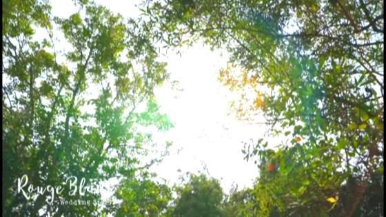 陽だまりと緑に囲まれた貸切一軒家!アットホームなパーティを叶えよう♪ Rouge Blanc(ルージュ:ブラン)