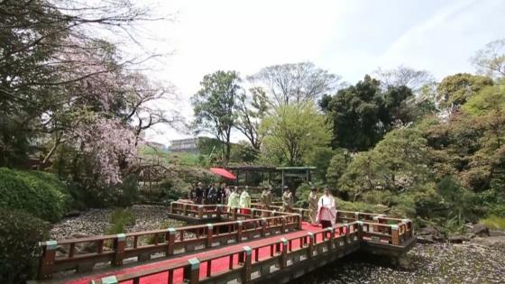 季節毎に表情を変える東郷神社での挙式 東郷神社・原宿 東郷記念館
