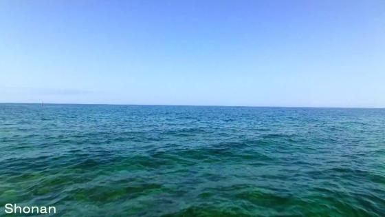 湘南のオーシャンビューを望む一軒家貸切ウエディング サザンビーチで永遠の愛を誓う 茅ヶ崎迎賓館
