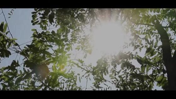 憧れの大聖堂と雄大な森に囲まれたバンケット ここでしか叶わない贅沢ウエディング Floria Garden AOMORI (フローリアガーデン青森)
