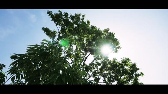 天井から自然光が降り注ぎふたりを幸せの光で満たすチャペルと大階段での感動的な挙式 ザ・リーヴス プレミアムテラス