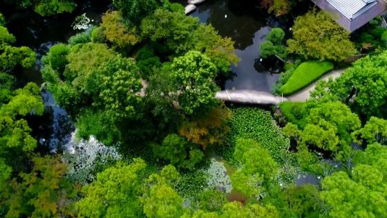 【梅田5分】8000坪の庭園で上質なウエディングを 太閤園