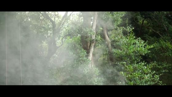 「手作りが嬉しい!」食の祝宴!1000年の森のリゾートで叶えるウエディング Wedding Resort ぶどうの樹