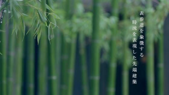表参道駅徒歩2分。自然と日本の空間美が融合した大人の隠れ家 クラシカ表参道