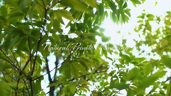 水と緑のくつろぎに満ちたナチュラルウエディング ブランレヴュー宇都宮アクアテラス