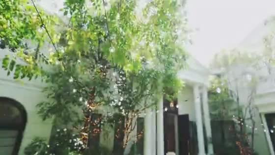 【六本木駅/徒歩2分】豊かな木々と小鳥のさえずりに包まれた、心地よい大人の貸切邸宅 麻布迎賓館